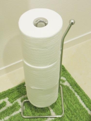 toilet-stand1.JPG