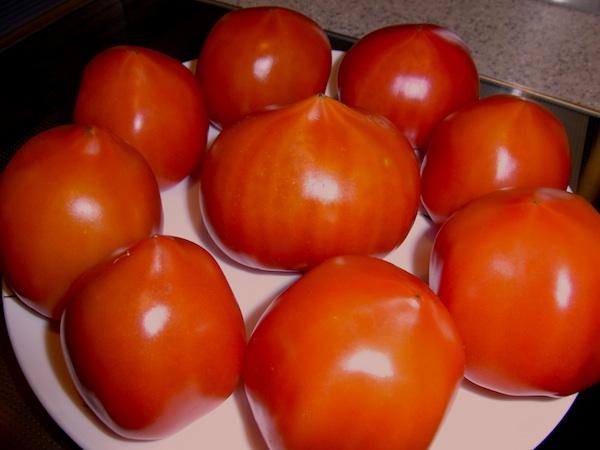tomatoyamanonamae.jpg